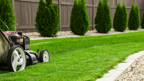 Preparing Your Lawn for Houston's Summer