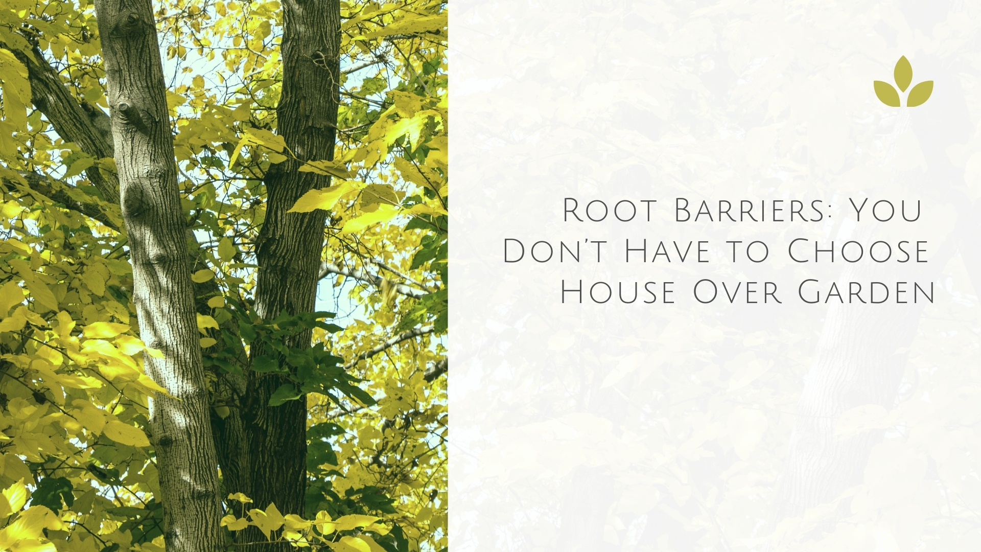 Root Barriers: You Don't Have to Choose House Over Garden